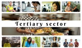 Tertiary sector