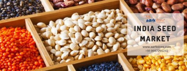 Seeds (1)